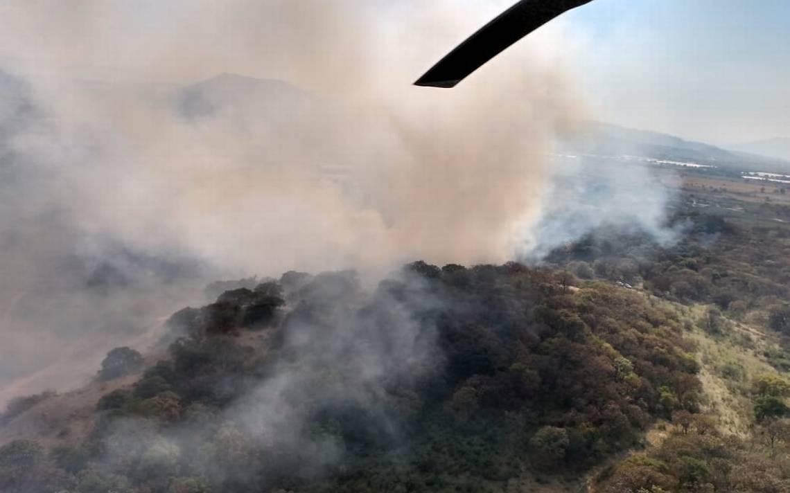 Incendio Afecto 11 Hectareas En El Bosque De La Primavera El Occidental Noticias Locales Policiacas Sobre Mexico Guadalajara Y El Mundo